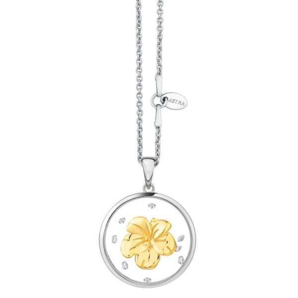 astra-bright-flower